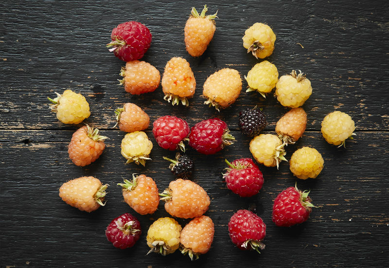 Multi-colour raspberries by Brogdale - Which British Fruit And Vegetables Are In Season In July?